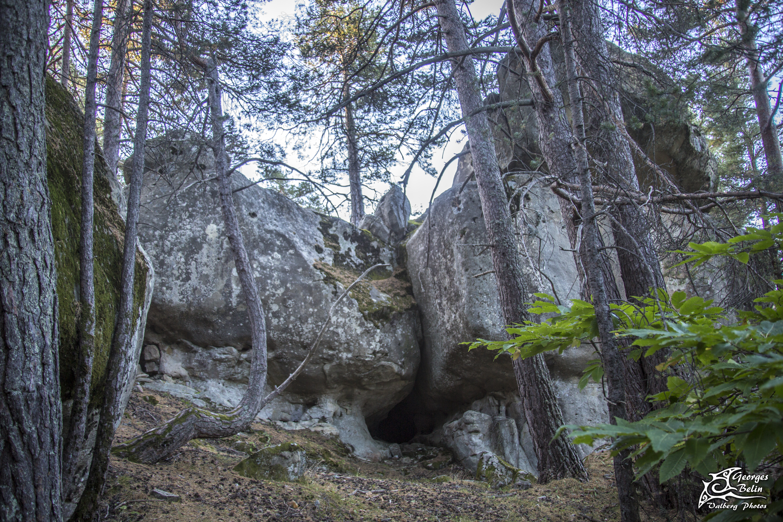Forêt de Méailles